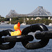 Duckie and the Story Bridge