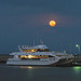 Eye Spy with Harvest Moon