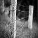 Fence-post