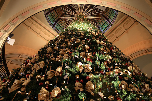 Queen Victoria Building Christmas Tree - a Brisbane Photo by David ...